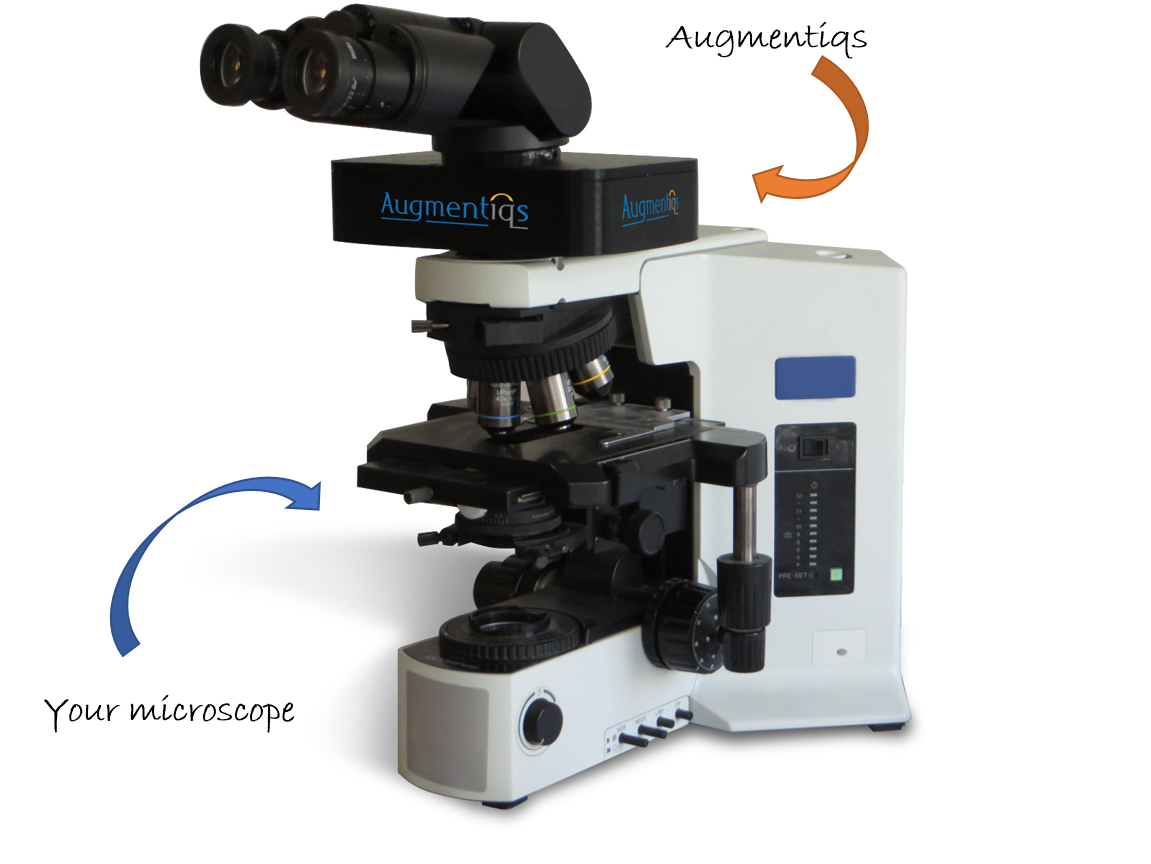 microscope camera field of view for digital pathology