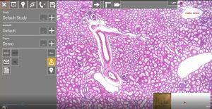 microscope-slide-tracker-screenshot