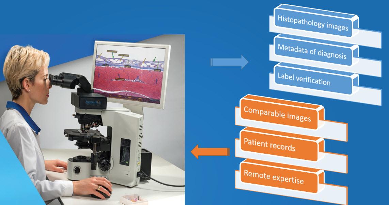 digital-pathology-microscope-data-flow