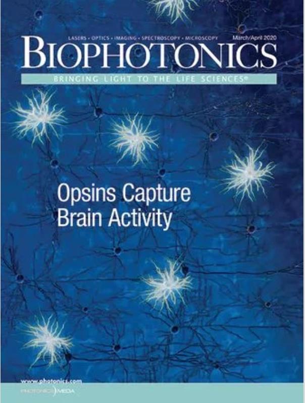 AR Microscopy with AI in Biophotonics