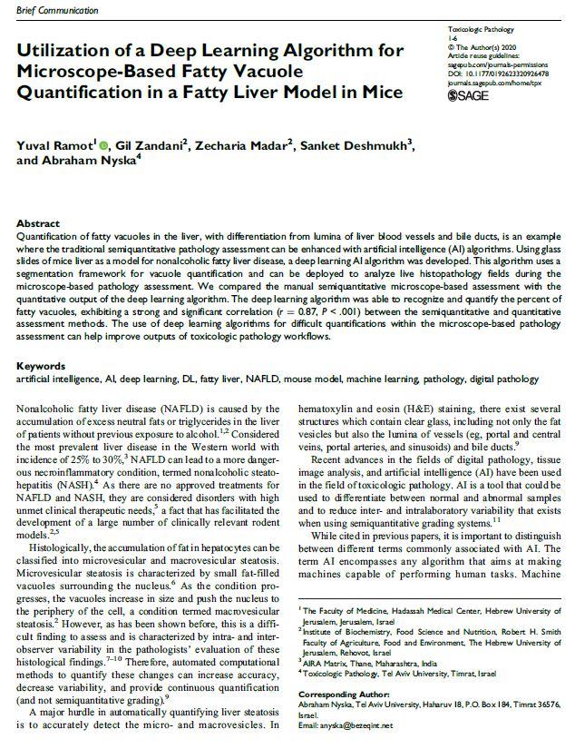 utilization-ai-microscope-fatty-liver