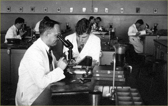 microscope versus digital pathology
