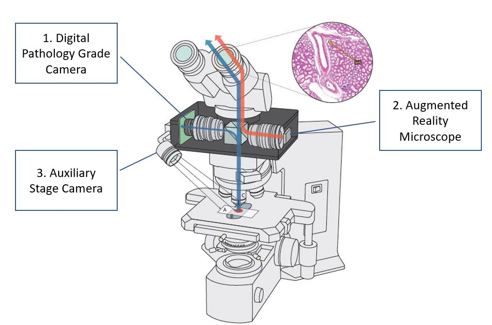 digitalpathology-microscope-diagram