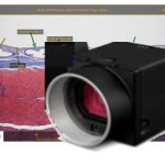 Discounted Price for 3rd Ocular Cameras